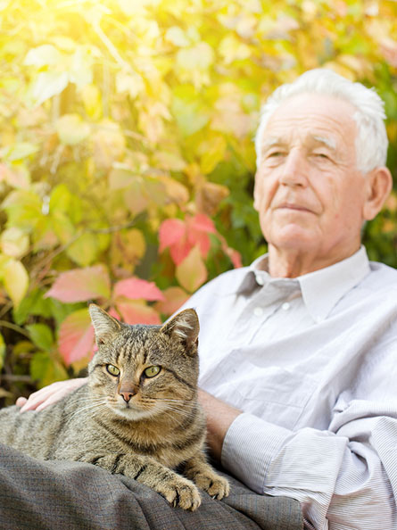 Elderly Care in Los Angeles: Seniors With Pets